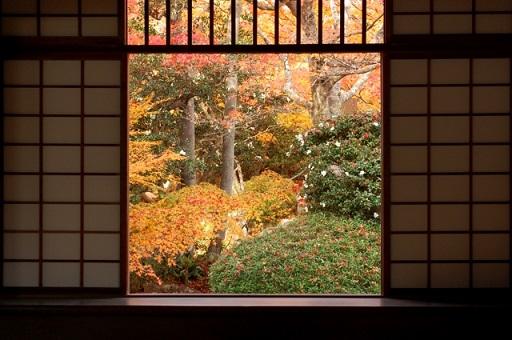 kyotokouyo6.jpg