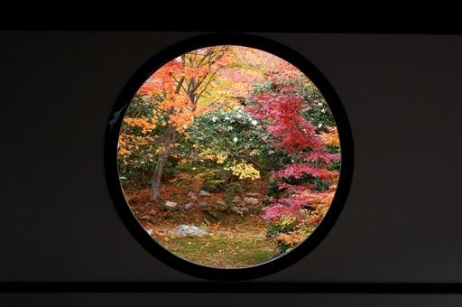 kyotokouyo7.jpg